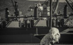 3rd Syros Triathlon_174