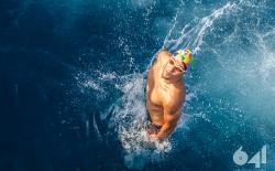 3rd Syros Triathlon_323